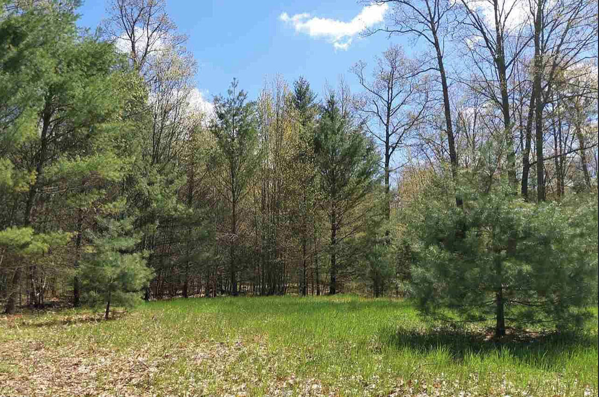Rural Vacant Land – Easy Cheap Land